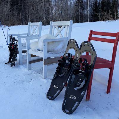 Kahdet lumikengät nojaavat ulkona oleviin tuoleihin lumisessa pihassa.