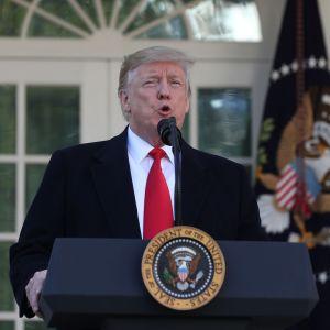 USAs president Donald Trump talar utanför Vita huset.