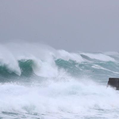 Haishen-taifuuni nostatti myrskyaaltoja Seogwipon kaupungin edustalla Jejun saarella Etelä-Koreassa 6. syyskuuta 2020. Taifuunin ennustetaan iskevään alueelle maanantaina.
