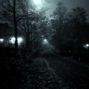 Pimeä tie kuunvalossa.