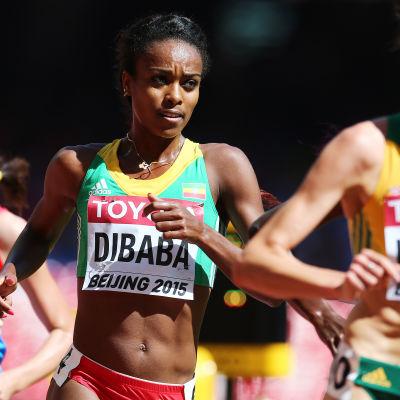 Genzebe Dibaba i kvalet på 5000 meter.