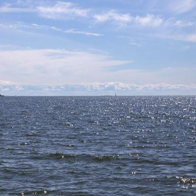 Havsutsikt på Drumsö i Helsingfors.