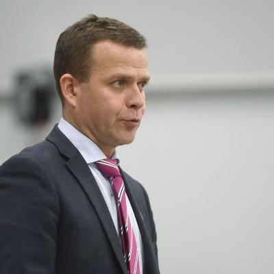 Petteri Orpo i kostym.