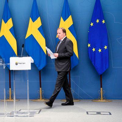 Statsminister Stefan Löfven håller presskonferens efter omröstningen om misstroende i riksdagen.