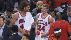 Robin Lopez och Lauri Markkanen spelar basket för Chicago Bulls.