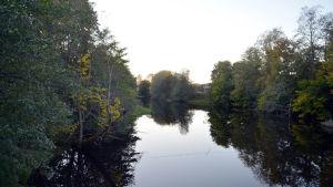 En å med spegelklart vatten, omringad av träd som har gulnande blad.