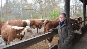 Köttproducent Anna Alm på Mörby gård i Raseborg