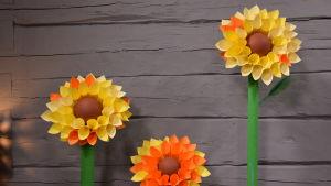 Kolme isoa paperista valmistettua auringonkukkaa.