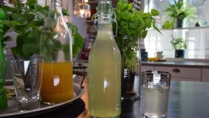 Alkoholfri örtinfusion i ett glas på ett bord