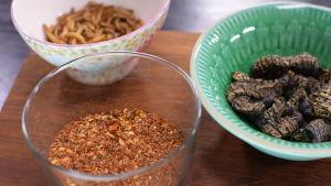 Kryddsalt med fjärilslarver och mjöllarver i ett kök.