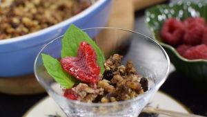 Portion med drönarlarv-crumble med kokos och hallon