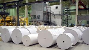 En stor fabrikshall. På golvet ligger rader med pappersrullar som är flera meter höga.