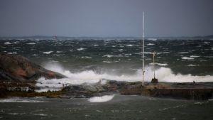 Stormen Aila förorsakade hård vind i Hangö. Läsarbild.