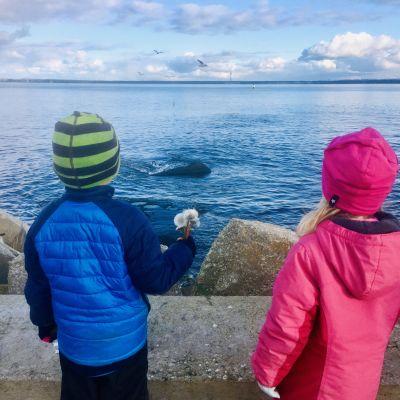 Två barn ser ut över havet utanför Tallinn en solig höstdag.