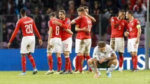 Schweiz spelare firar i segermatchen mot Irland.