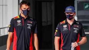 Max Verstappen och Alexander Albon i Red Bull.
