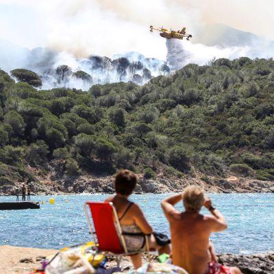 Markbränder i La Croix-Valmer nära Saint-Tropez.