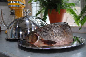 Iden blir goda fiskbullar