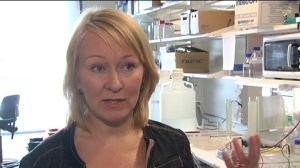 Anu Wartiovaara, professor i klinisk molekylärmedicin vid Helsingfors universitet.