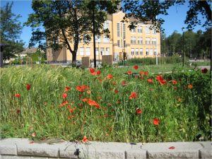 Lagmans skola i Jakobstad