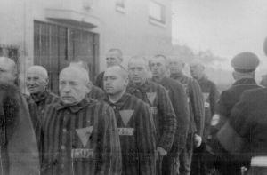 lägerfångar, Sachsenhausen, rosa triangeln, Nazityskland