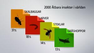 �tbara insekter