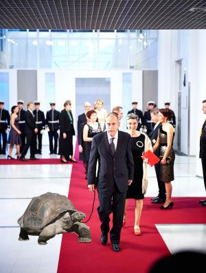 Jörn Donner får en 100-årig galapagossköldpadda.