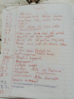 Ratsastuspäiväkirjan sivu