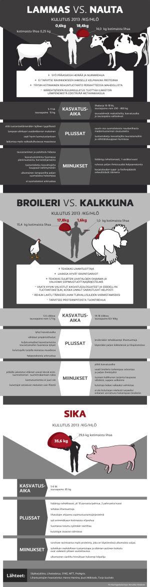 Infografiikka suomalaisten lihankulutuksesta, tuotantoeläinten plussat ja miinukset