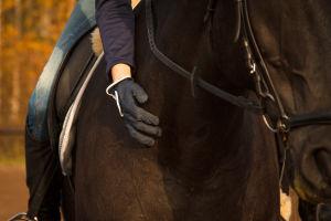 Ratsastaja halaa hevosen kaulaa