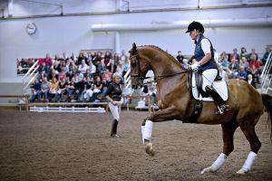 Kyra Kyrklund neuvoo ratsastajaa maneesissa