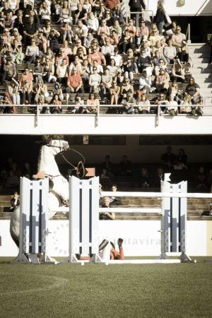 Hevonen takajaloillaa, ratsastaja maassa olympiastadionilla