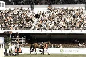 ratsastaja taluttaa hevosta pois esteradalta