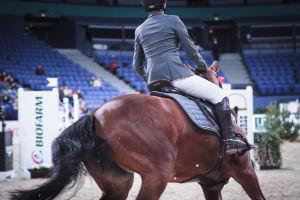 ratsukko esteratsastusradalla