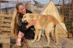 Sini Isaksson silittää koiraa Glinan koiransuojelijoiden tarhalla Romaniassa