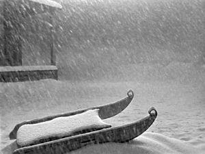 Pikku Charles Kanen kelkka, kuva Orson Wellesin elokuvasta Kansalainen Kane