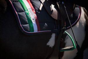 satula hevosen selässä