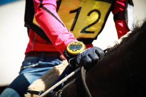 ratsastajan keskivartalo ja kello
