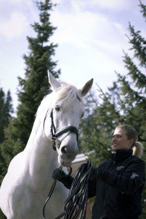 Hevonen ja nainen kuusien edessä