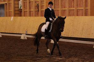 kouluratsastaja ja hevonen maneesissa