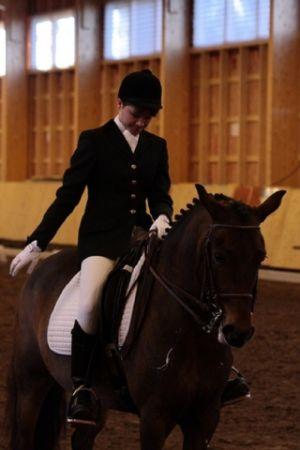Kouluratsataja ja hevonen maneesissa