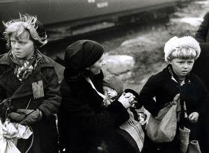 Evakerade i Sverige, Lapplandskriget