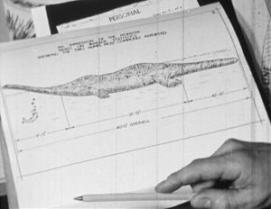 Tutkija Tim Dinsdalen luonnos Loch Nessin hirviöstä.