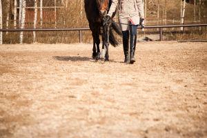 Ronja ja Mira