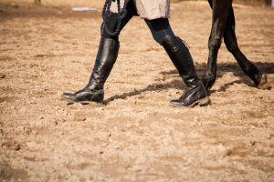 Ihmisen ja hevosen jalat
