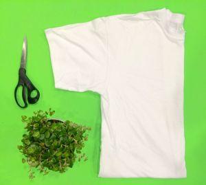 T,paita, sakset, ruukkukasvi