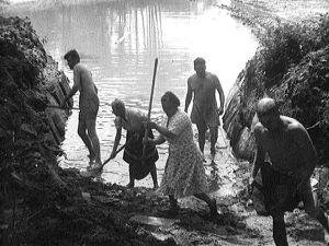 Amerikansuomalainen Erosen perhe rakentaa uima-allasta (1947).