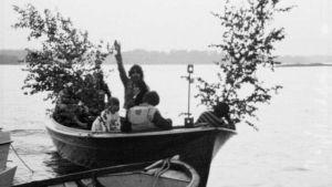 Båt med midsommarbjörk, 1976