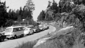 Färjköer, 1976