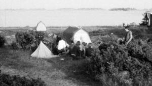 Campare på Rosala, 1976